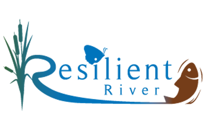 Resilient River