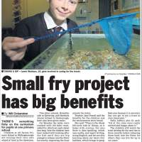 Small fry project has big benefits - Evening Telegraph, Thursday, February 12, 2009