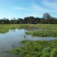 Water released on to the Water meadow for the first time for at least 100 years at the Wicksteed Park Nature Reserve