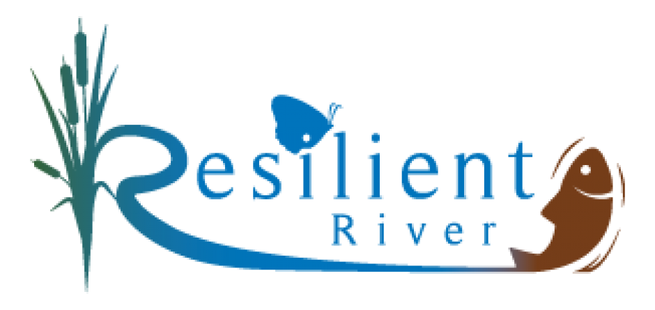 Celebrating the First Year of Resilient River!